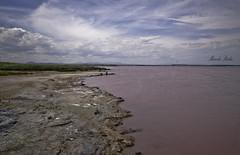 El reino de la sal (Marcelo Reche Caadas) Tags: nature landscape nikon paisaje salinas alicante nubes marcelo torrevieja lamata reche