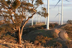 20130528_07_Waterloo (Bush Philosopher - Dave Clarke) Tags: wind australia electricity southaustralia turbine windfarm renewable wateloowindfarm