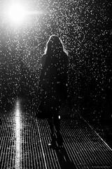 IMG_1247 (ThePhotoweaver) Tags: newyorkcity blackandwhite bw newyork silhouette blackwhite modernart moma artmuseum rainroom experientialart momarainroom