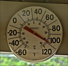 Hot Enuf For Ya? (Jo- Brilliant Sun and Mid 60's Today!) Tags: hot temperature 112f hotenufforya