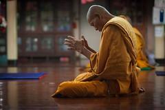 Huai_Sai_Thai-49.jpg (John_Clark ) Tags: thailand temple hands worship shrine buddha buddhist prayer religion huaisaithai