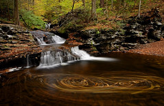 Ricketts Glen: Leaves in the water (Shahid Durrani) Tags: waterfall pennsylvania falls glen where waters meet ricketts wyandot