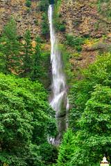 20130904-IMG_9368 (PPWBLisa) Tags: oregon washington unitedstates stevenson waterfalls gorge multnomahfalls