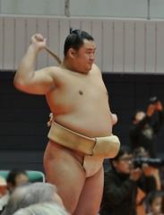 DSC_1682 (kajikaz) Tags: hiroshima sumo
