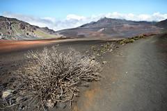 Maui 4 (gsamie) Tags: summer sky plants usa mountains clouds canon volcano hawaii nationalpark hiking path maui