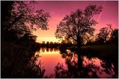 Dreaming of pink and gold (James Waghorn) Tags: pink autumn light sunset sky lake tree water silhouette reflections gold countryside kent nikon sigma calm contrails ultrawide tranquil maidstone topaz lightroom motepark sigma1020 d7100 blinkagain bestofblinkwinners blinksuperstars bestofsuperstars blink4gallery