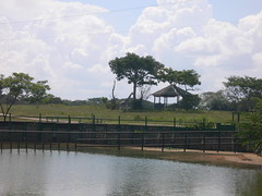 Parque Yumká (Caneckman) Tags: parque naturaleza animales tabasco villahermosa yumka