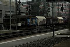 Güterzug mit SBB Lokomotive Am 843 unterwegs am Bahnhof Bern Bümpliz Nord bei Bern im Kanton Bern in der Schweiz (chrchr_75) Tags: christoph hurni schweiz suisse switzerland svizzera suissa kantonbern chrchr chrchr75 chrigu chriguhurni 1401 januar 2014 albumbahnenderschweiz bahn eisenbahn train treno zug bahnen swiss schweizer chriguhurnibluemailch januar2014 albumsbbam843 diesellokomotive sbb cff ffs schweizerische bundesbahn bundesbahnen lokomotive am 843 juna zoug trainen tog tren поезд паровоз locomotora lok lokomotiv locomotief locomotiva locomotive railway rautatie chemin de fer ferrovia 鉄道 spoorweg железнодорожный centralstation ferroviaria