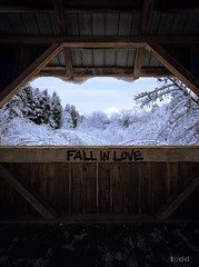 tunnel of love (Todd (Whitby61)) Tags: park bridge blue trees winter ontario canada cold ice nature field graffiti frozen cool experimental branch colours shadows earlymorning canadian whitby blueskies todd framing february amateur icicles mothernature oldmanwinter yesteryear conservationarea cullengardens canon1740 colorefexpro canon6d
