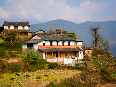 Dhampus homes (whitworth images) Tags: nepal roof white house mountains building home stone rural grey asia village traditional terraces fields slate agriculture agricultural piles manure paved fertiliser kaski dhampus