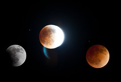 bloodmooon (La_Photos) Tags: red orange moon eclipse blood full fullmoon cycle lunar bloodmoon phases endofworld armegeddon