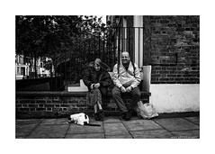 animals are people too (jrockar) Tags: street people blackandwhite bw food woman man guy london animal lady contrast cat shopping bag lens photography prime mono sitting fuji shot feeding pavement candid documentary rangefinder snap human madness elder instant fujifilm moment situation highlight ordinary decisive ordinarymadness x100s