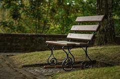 Bench (Matt H. Imaging) Tags: park bench minolta bokeh sony depthoffield beercan slt a55 sonyalpha minolta70210f4 minoltaaf70210mmf4 slta55v ©matthimaging