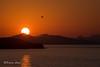 Sunset at Babin Kuk (Indigoplum) Tags: sea holiday mediterranean croatia dubrovnik adriatic babinkuk
