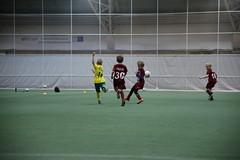 IMG_1655 (tindemus) Tags: ilves p08 värit jalkapallo hipposhalli