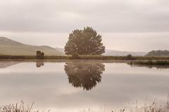 Elands Valley   Dullstroom   2017/02/24-26 (Way To Go Photography) Tags: botanicalgardens water dullstroom elandsvallei floods harvey henk krokiodilrivier messe valle
