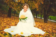Свадьба (uska4) Tags: свадьба свадебное фото невеста жених любовь золотая осень свадебноефото