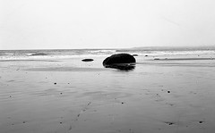 4x5 Cow Bay004 (formatcdn) Tags: blackandwhite beach nikkor atlanticocean superspeedgraphic