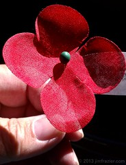 I've got mine.  Do you have yours? (Jim Frazier) Tags: park flowers red holiday gardens museum botanical illinois memorial may dupage patriotic il hero poppy poppies botanic remembrance patriotism botanicgarden horticulture preserve botanicalgarden heroic memorialday wheaton americanlegion publicgarden inflandersfields cantigny dupagecounty cantignypark 2013 ldmay jimfraziercom ld2013