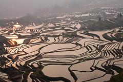 Yuangyang (vofot) Tags: china landschap yuanyang