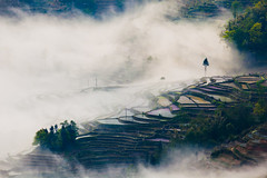 (Fog and Terrace) (zhouyousifang) Tags: china fog village terrace   yunnan