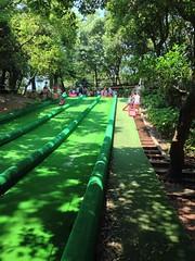 (pang yu liu) Tags: travel grass skiing farm 06 jun    2013