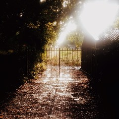 Through the gate (bigfishbowlhead) Tags: storm sunshine rain gates after iorn