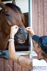 Smile! (Sara Petagna | apesara) Tags: horses horse smile ride cavalli cavallo scuderia animali equitazione