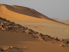 Egypt Western Desert (ursulazrich) Tags: sahara sand dunes egypt gypten egitto egypte dnen westerndesert libyandesert gilfkebir
