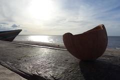 Awala Yalimapo Beach French Guiana (Joo Leito  Nomad Revelations) Tags: beach frenchguiana awalayalimapo