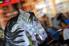 Best in Show (jarrett45frazier) Tags: nyc newyorkcity ny centralpark carousel centralparkcarousel