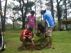 "Tree Planting • <a style=""font-size:0.8em;"" href=""http://www.flickr.com/photos/69054197@N03/10648510544/"" target=""_blank"">View on Flickr</a>"