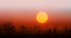 Alba lungo il Canale della Battaglia (tampurio) Tags: sunset sky italy panorama sun sunlight colors fog clouds sunrise landscape italia tramonto nuvole alba sony foggy cielo tramonti alpha sole nebbia paesaggi paesaggio padova veneto a58 battagliaterme canello platinumheartaward tampurio