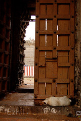 Derailed (Ezhil Ramalingam) Tags: poverty life temple sleeeping poorman virudhachalam