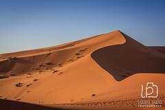 Merzouga Desert (Laura Pazo) Tags: street red summer blackandwhite green water colors kids sand desert market tourist arabic camel marrakech volunteer zouk tuareg merzouga azrou errachidia meski