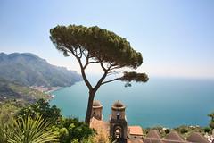 The Amalfi Coast (QuikSink) Tags: blue vacation italy plants mountains tree green history leaves yellow buildings coast high warm amalficoast altitude sunny trunk colourful ravello 2012 canon1740mm canon5dmarkiii