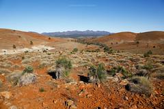 Flinders Ranges. Australia. (john white photos) Tags: mountains desert australian dry australia outback remote flindersranges wilpenapound