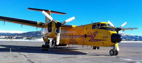 Buffalo CC-115