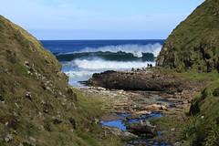 Huge Surf Awatotara Reserve Chatham Island New Zealand