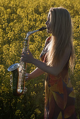 Silver & gold: May & sax - 2 (jonathan charles photo) Tags: music art topf25 field silver photo outdoor jonathan may charles player classical sax saxophone charente saxophonist jonathancharles chercherlafemme
