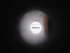 Adults (gagilas) Tags: word hole tube written script adults