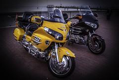 Yellow Honda (Azarbhaijaan) Tags: honda pentax motorcycle kuwait kuwaitcity goldwing souqsharq baghdadi pentaxk10d azharmunir drpanga