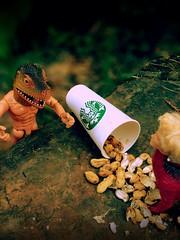 Day 144 of 365 - Ambushed! (sluggoman) Tags: dinosaur ken barbie peanuts starbucks 365days 365daysproject dinobarbie