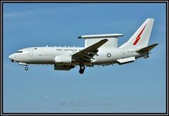 A30-004 Royal Australian Air Force (Bob Garrard) Tags: force air australian royal boeing 737 bwi wedgetail 737700 jlens kbwi e7a a30004