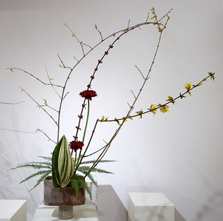 Ikebana Djiyuka - Forsythia