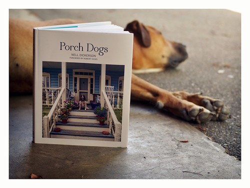 Porch Dogs.