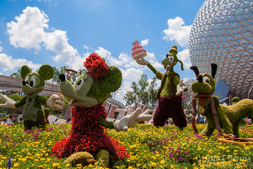 Epcot - Flower and Garden 20th Anniversary