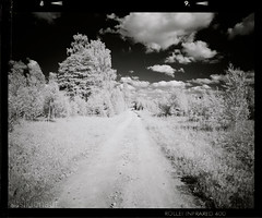 Estonian trails... (tsiklonaut) Tags: travel sky bw film grass contrast rollei analog landscape ir blackwhite estonia pentax drum tmax scanner dream scan developer 400 infrared roll medium format dreamy analogue 6x7 67 eesti grassy drumscan pmt   infrapuna fotograafia   photomultipliertube scanview scanmate