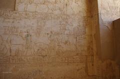 Tomb of Petosiris 21 (eLaReF) Tags: egypt tombs isadora ibex elgebel tunaelgebel petosiris tunaelgebbel
