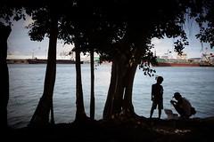Kaoshiung fishermen (sparth) Tags: trees silhouette port boats bay child fishermen sony taiwan silhouettes july minimal rx kaoshiung 2013 rx100 july2013 sonyrx100